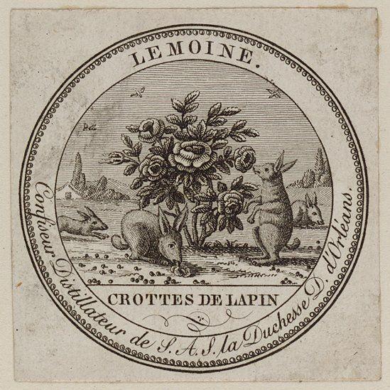 Crotte de Lapin