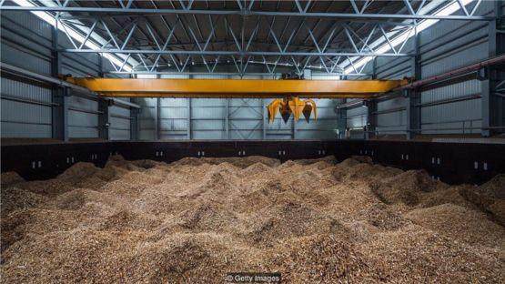 為了從生物質中發電,食品碎片被壓成粉末,然後被送入焚化爐。