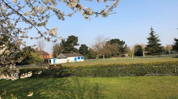 Hoa vẫn nở tưng bừng sắc xuân ngoài công viên Hesketh