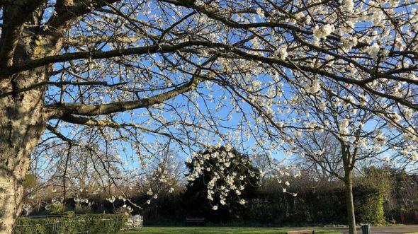 Công viên Hesketh ở Dartfort, Kent