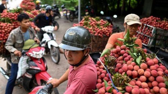 Cuộc sống ở Việt Nam đang trở lại bình thường, ảnh ngày 9/6, tỉnh Bắc Giang