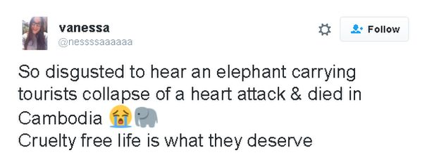 Tweet: So disgusted to hear an elephant carrying tourists collapse and die of a heart attack in Cambodia [sadface emoji] [elephant emoji] Cruelty free life is what they deserve