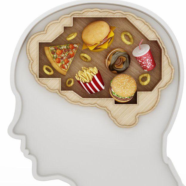 Comida chatarra en cerebro