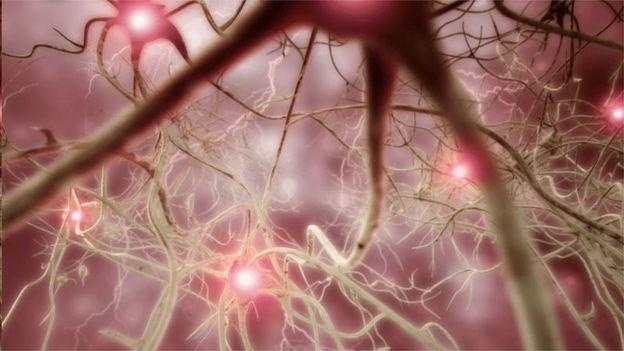 Nuralink试图找到刺激瘫痪患者大脑、使他们可以控制电脑的方式