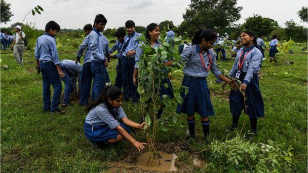 School children planting trees.