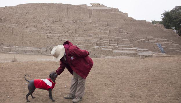 Sumac en piramide