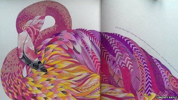 Animal Kingdom Colouring Adult Book Brings Millie Marotta Top 10 Success BBC News