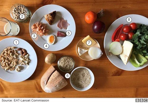 Guía de alimentos que incluye la dieta