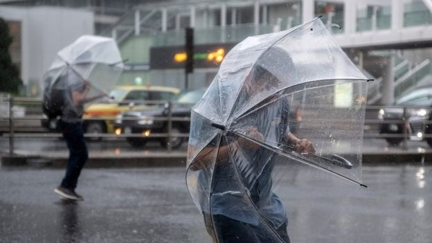 People shelter under umbrellas from the wind and rain as they cross a road near Shinjuku train station on October 12, 2019 in Tokyo, Japan