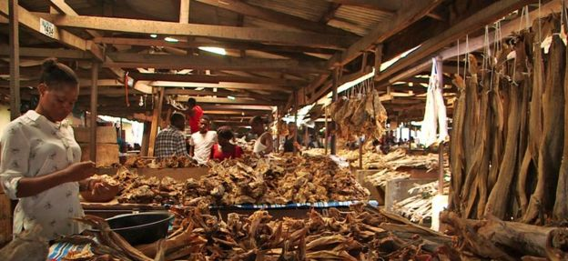 The stockfish markets of Nigeria