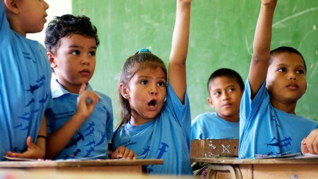 Niños levantando la mano en una clase donde se enseña sobre el tiburón martillo