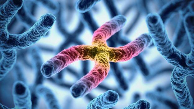 Imagen en 3D de un cromosoma