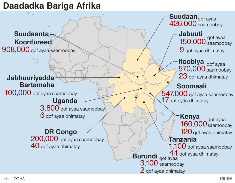 Saamaynta roobabka ee dalalka bariga Afrika