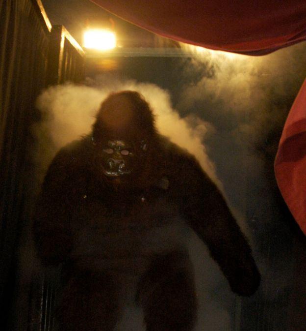 Ator fantasiado de gorila em espetáculo circense dos EUA