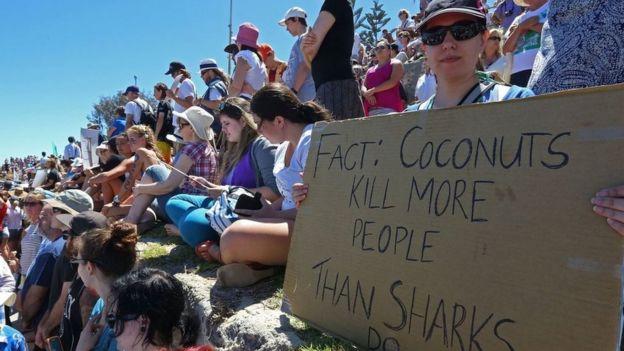 Protesto contra abate de tubarões na costa oeste da Austrália em 2014