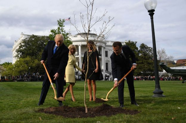 Trump and Macron plant a tree from Belleau Woods