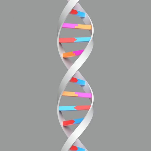 Estrutura molecular do DNA