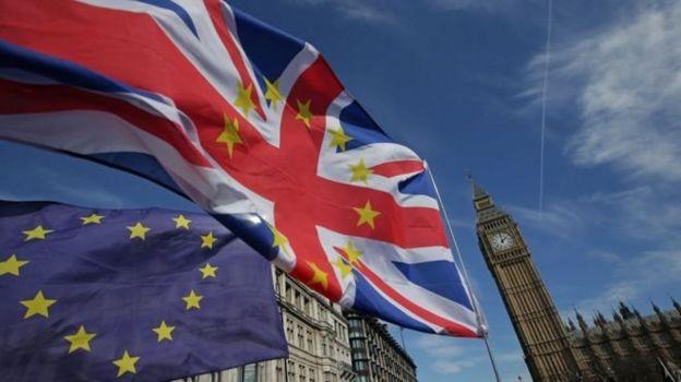 AB yanlılarının İngiltere Parlamentosu önünde dalgalandırdıkları bayraklar