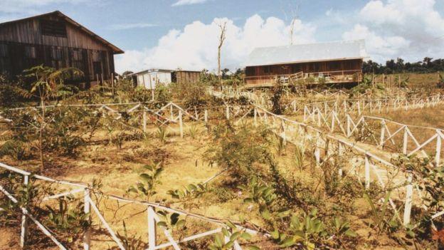 Tierra agrícola en Jonestown.