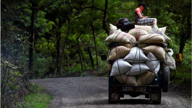 Carro en Colombia transportando café.