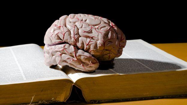 Reprodução de um cérebro sobre um livro