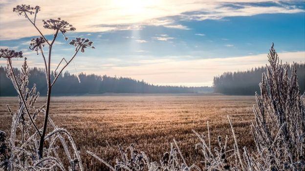 Paisagem de inverno na Finlândia.