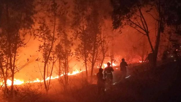 Firefighters battle a forest blaze in Xichang in China