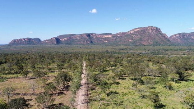 Vista aérea do Cerrado, com montanha ao fundo e caminho de terra entre vegetação rasteira