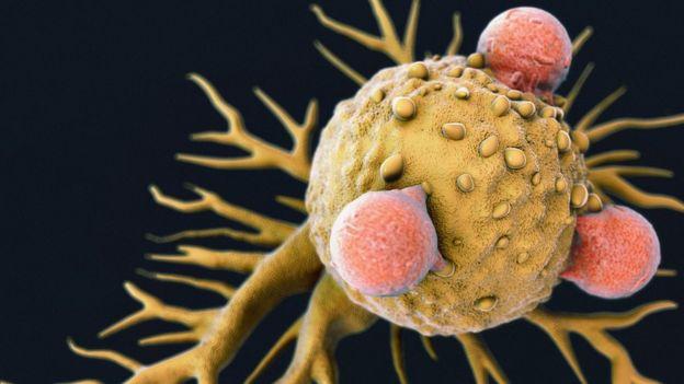 বিজ্ঞানীরা সতর্ক করেছেন যে জিনগত পরিবর্তন মানবদেহে ক্যান্সার তৈরি করতে পারে