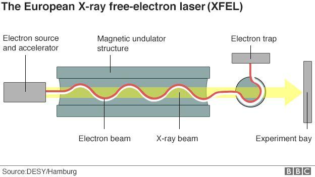 Schematic of XFEL