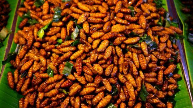 Larvas de bicho-da-seda em prato típico da Tailândia
