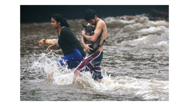 Hawaii residents carry dogs through flood waters.