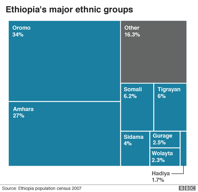 Chart showing the ethnic make-up of Ethiopia