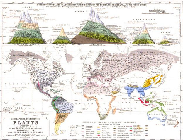 Distribuição geográfica de 1848 plantas físicas do Atlas por Alexander Keith Johnston.