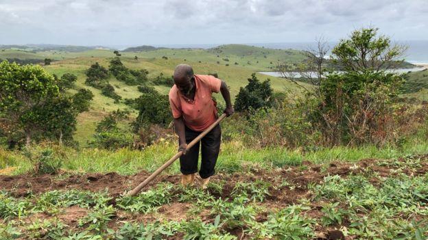 Bab Dlamini tills the soil in Xolobeni, Eastern Cape