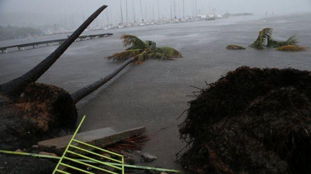 Puerto Rico después del huracán Irma