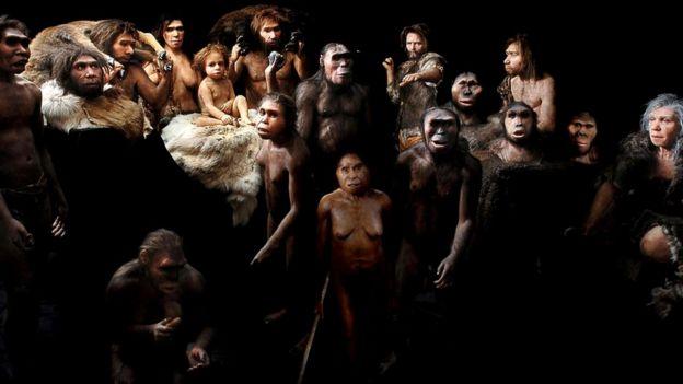 Около двух миллионов лет назад наши предки гоминины начали терять обезьяноподобные черты и стали более похожими на современных людей