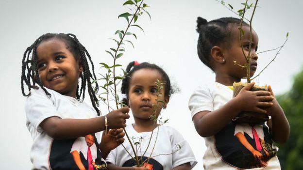 Crianças plantando árvores na Etiópia