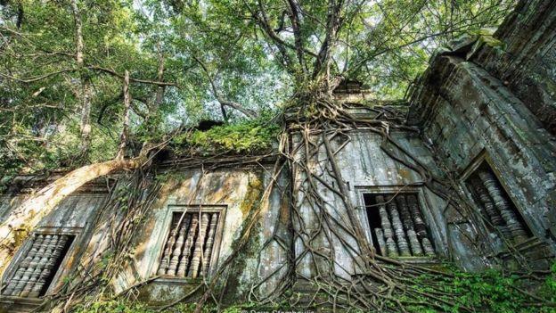 Ngôi đền được giữ bí ẩn mãi mãi một khi thiên nhiên lấn át nó.