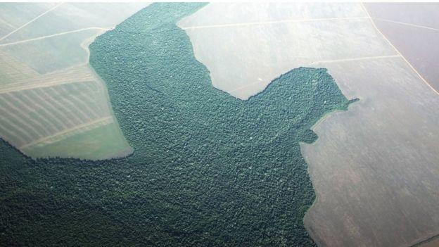 Imagem de área parcialmente desmatada na Amazônia