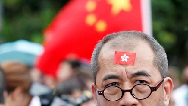Pro-government demonstrators in Hong Kong