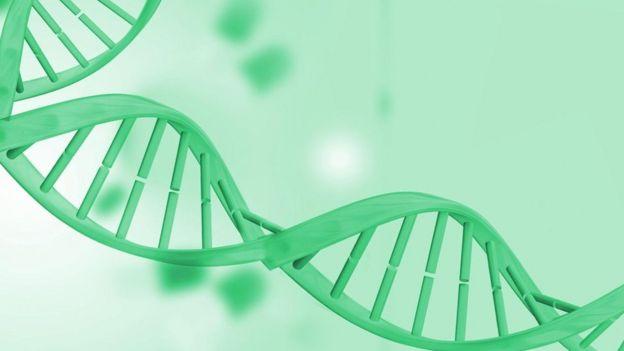 Una doble espiral de ADN