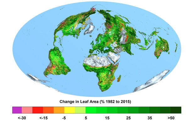 The greening of Planet Earth