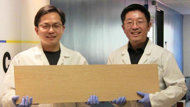 Liangbing Hu e Teng Li com a madeira