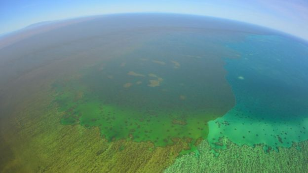A floodwater plume extends onto Old Reef on the mid-shelf of the Great Barrier Reef in Queensland
