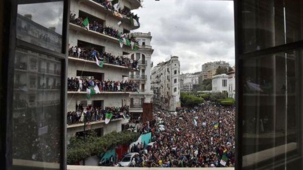 الوضع السياسي في الجزائر - متجدد  _105959237_3