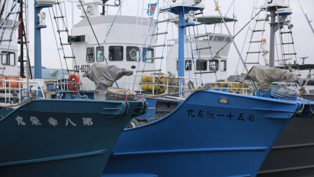 Japan resumes commercial whaling after 30 years - BBC News