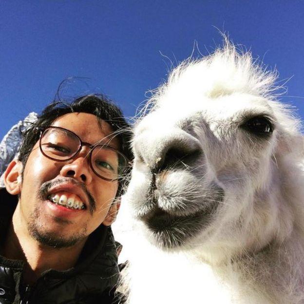 Wasawat cùng một chú lạc đà Alpaca