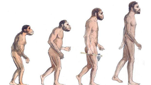 古人类学会直立行走