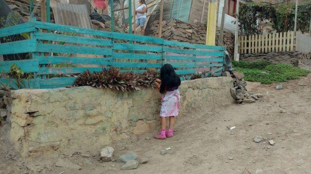 Comunidad de Eliseo Collazos en Lima recogiendo una fruta